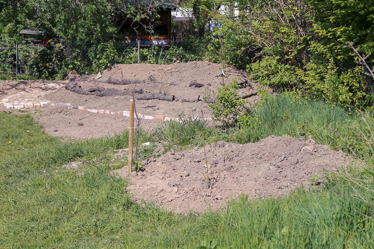 Im hinteren Bereich soll ein Naturgarten entstehen.