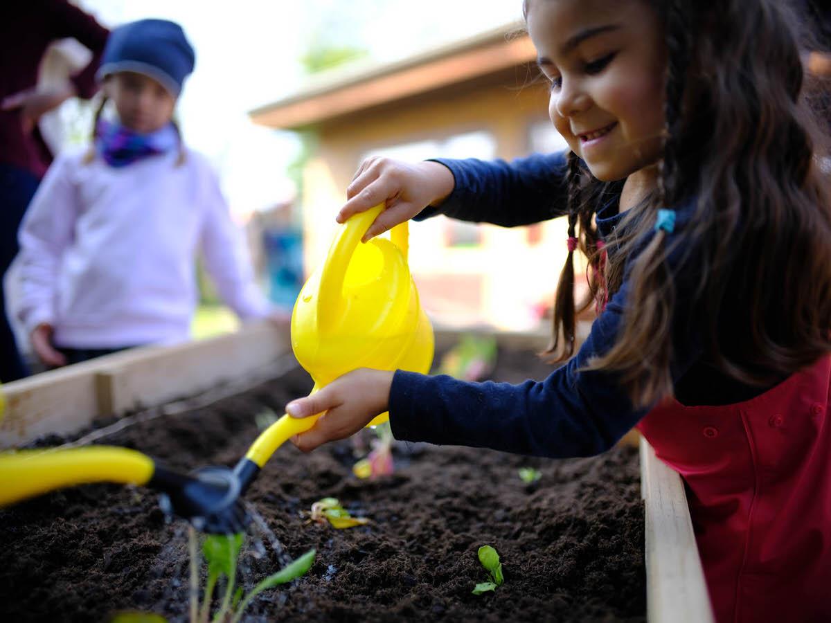 Ackerhelden Bildungsprojekt In Neuerkeröder Kita